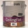 Premium Ceiling Flat
